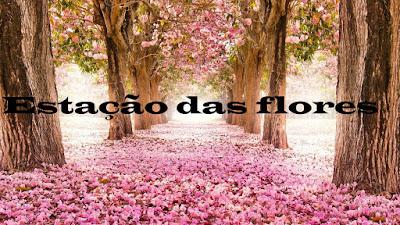 flores, flor, primavera, estação
