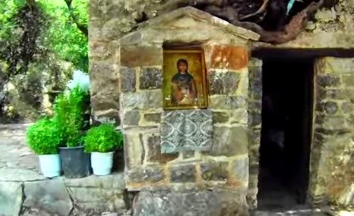 Το ανεξήγητο φαινόμενο με τα δένδρα στη σκεπή της Αγίας Θεοδώρας...
