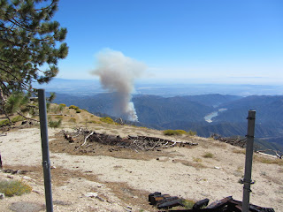 View south toward the Williams Fire 2012 from South Mount Hawkins