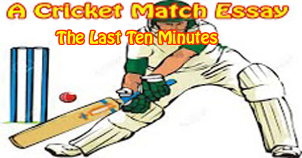"short essay on a cricket match Essay on ""one day cricket match "" complete essay for class 10, class 12 and graduation and other classes."