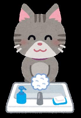 手洗いのイラスト(猫)