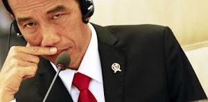 Keterbatasan Jokowi Dalam Bahasa Tak Bisa Jadi Alasan Bolos Di Forum Internasional