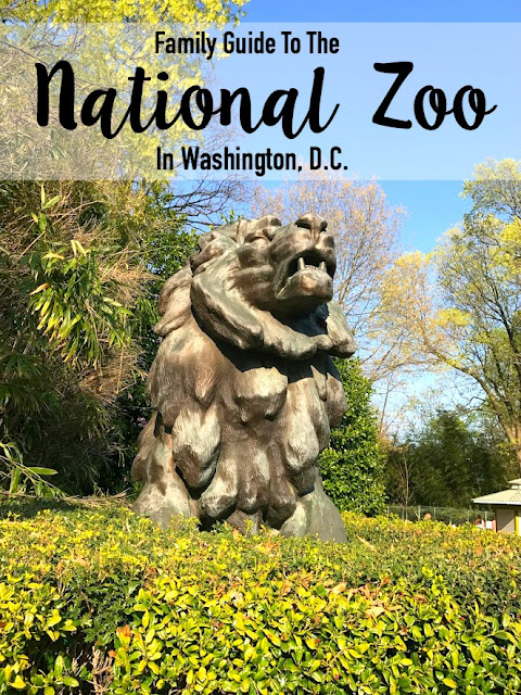 The Family Fun Guide to the National Zoo in Washington DC!