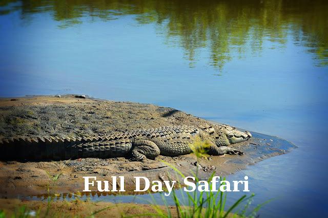 Full day safari in udawalawe national park