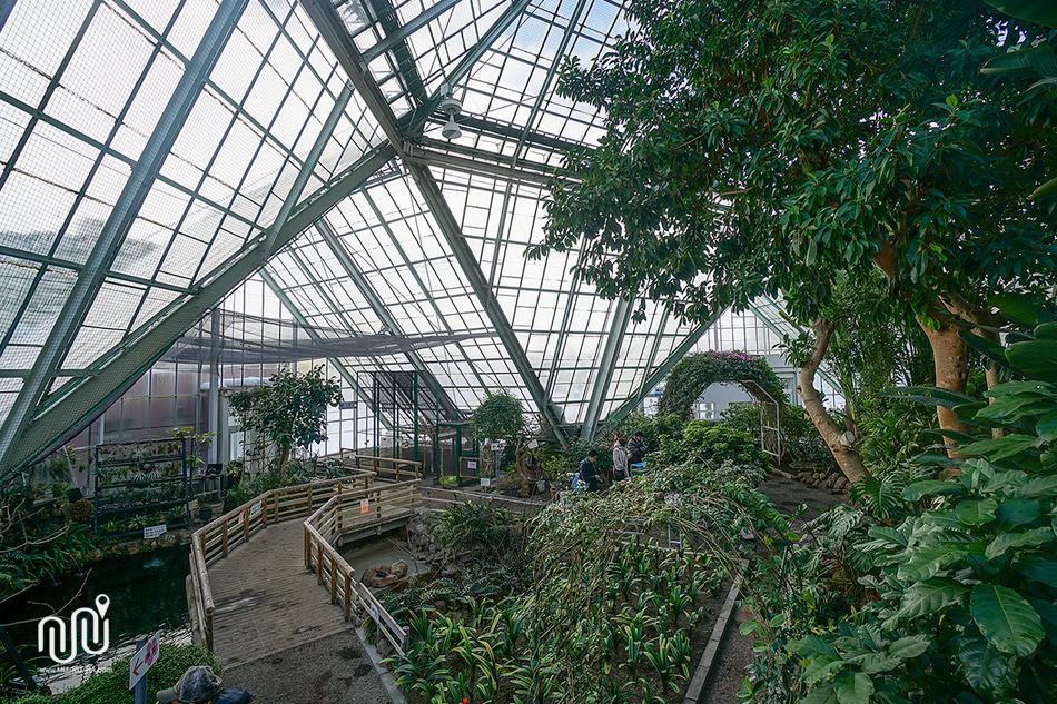 รีวิวพาเที่ยวสวนพฤกษศาสตร์ฮาโกดาเตะ (Hakodate Botanical Garden) เมือง HAKODATE