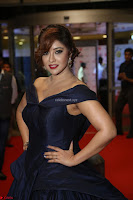Payal Ghosh aka Harika in Dark Blue Deep Neck Sleeveless Gown at 64th Jio Filmfare Awards South 2017 ~  Exclusive 079.JPG