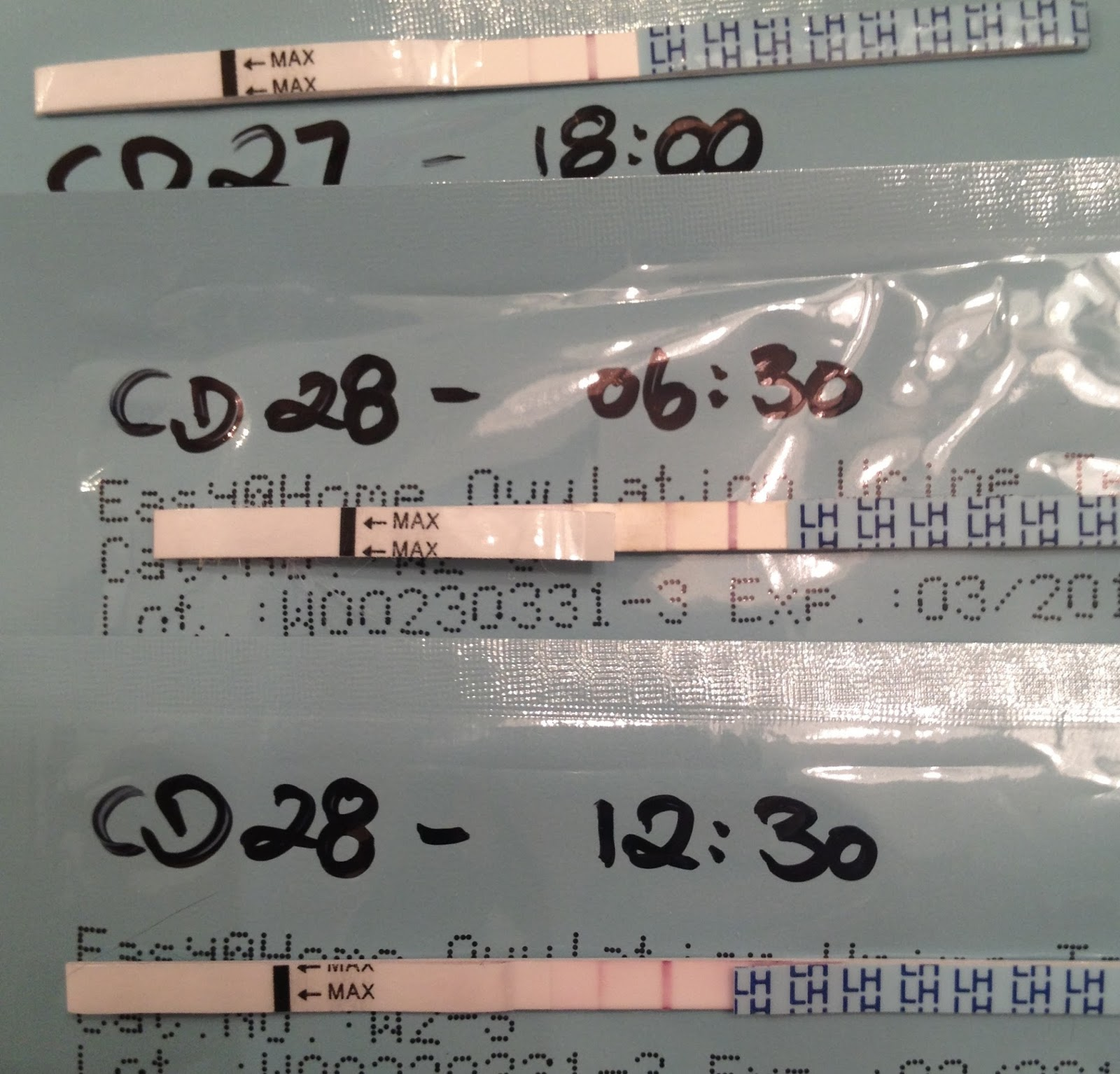 Opk negative but cervical mucus present in urinalysis