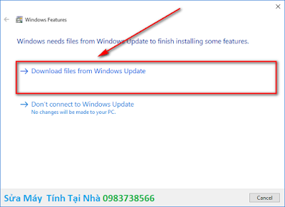 Chọn Download files from Windows Update