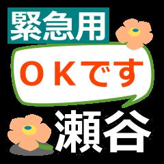 Emergency use.[seya]name Sticker