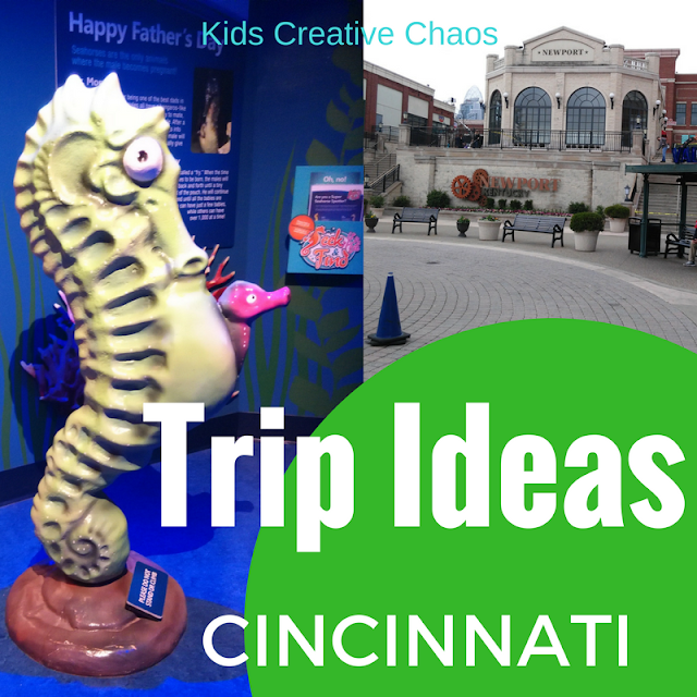Cincinnati Vacation Ideas: Family Fun