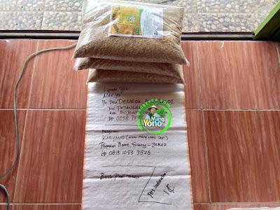 Benih pesanan  NARYO Bojonegoro, Jatim..  (Sebelum Packing)