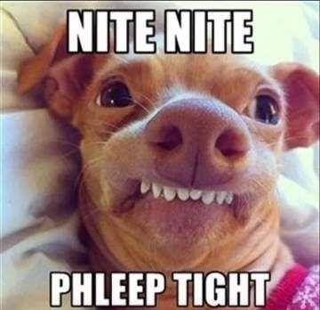 Funny Good Night Meme, Image