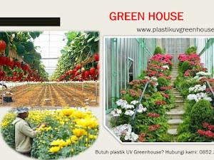 Kenapa Harus Menggunakan Plastik UV Greenhouse?