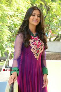 Actress Pooja Jhaveri Latest Stills in Purple Salwar Kameezt at Dwaraka Success Meet  0141.JPG