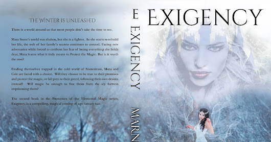 My Book Review of EXIGENCY