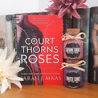 https://szebrabooks.blogspot.com/2018/08/a-court-of-thorns-and-roses-by-sarah-j.html