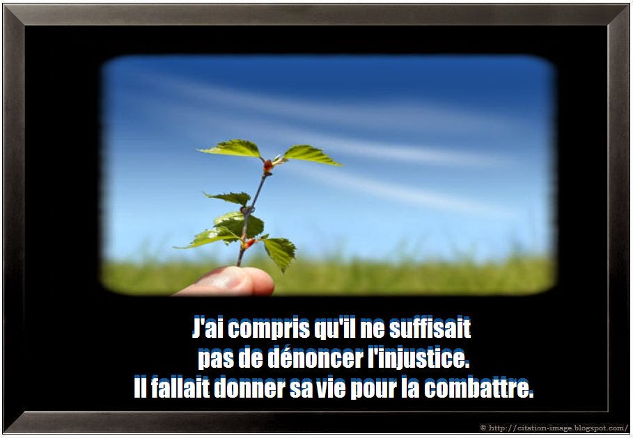 Citation albert camus en image