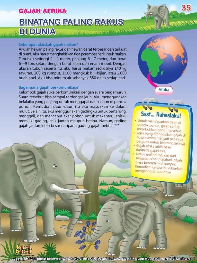 Gajah Afrika - Binatang Paling Rakus di Dunia