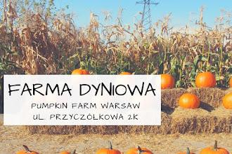 Farma dyniowa pod Warszawą: Pumpkin Farm Warsaw