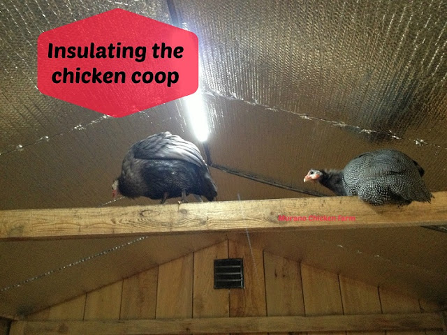 insulating a chicken coop