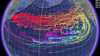 IMPACTANTE INFORME: 1/3 DE LOS OCEANOS DE LA TIERRA PODRIAN ESTAR CONTAMINADOS CON RADIACION FUKUSHIMA.