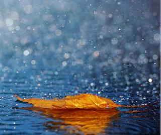 http://amajeto.com/games/november_rain/