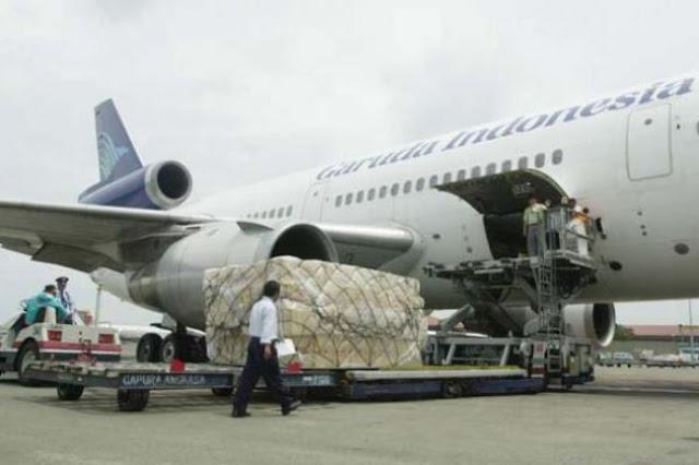 cara dan syarat ketentuan pengiriman hewan via udara animal