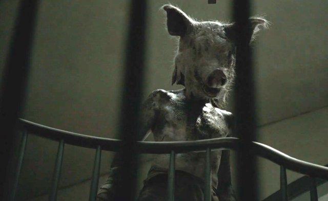 El hombre con cabeza de cerdo ahs american horror story roanoke