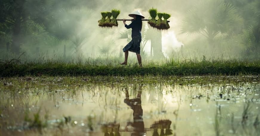 16 Kata Kata Mutiara Bahasa Sunda Beserta Artinya Kumpulan