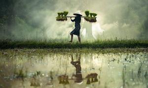 16 Kata Kata Mutiara Bahasa Sunda beserta Artinya