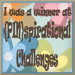{Pin}spirational Winner