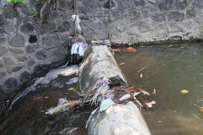 sampah-bersih4