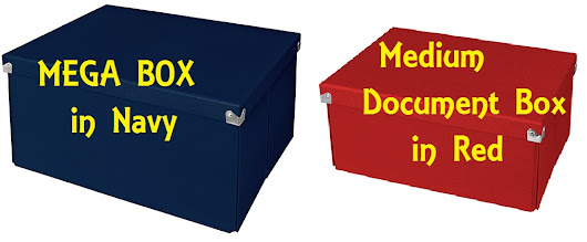 Product Review: Pop n' Store Storage Boxes [Mega Box and Medium Document Box]
