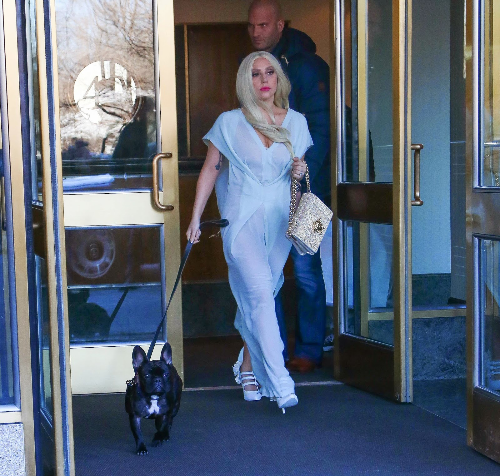 Lady Gaga Was Spotted Leaving Her Apartment Building In New York City On February 28 With Dog Asia Check Out The Candids Added Clicking