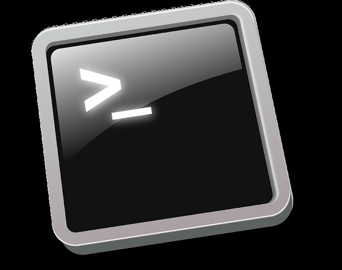 Linux Comandos básicos para iniciantes