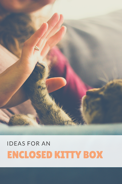 DIY Ideas and Inspiration for Enclosed Kitty Litter Box