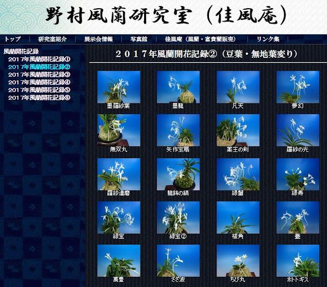 http://www.fuuran.jp/fuuranhana_2017_2.html