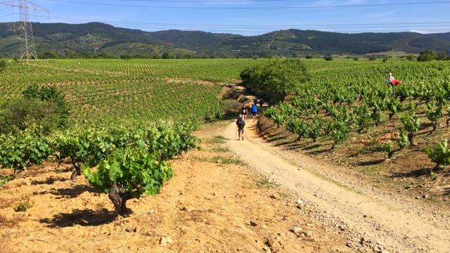 camino-santiago-villafranca-del-bierzo