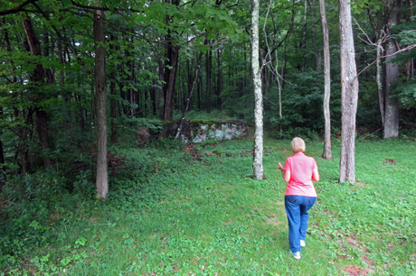 Woman walks into the woods.