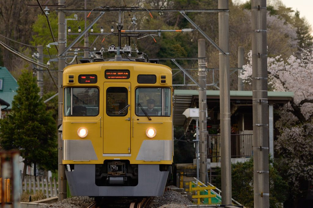 Seibu_series_2000_Tamako_North_Line