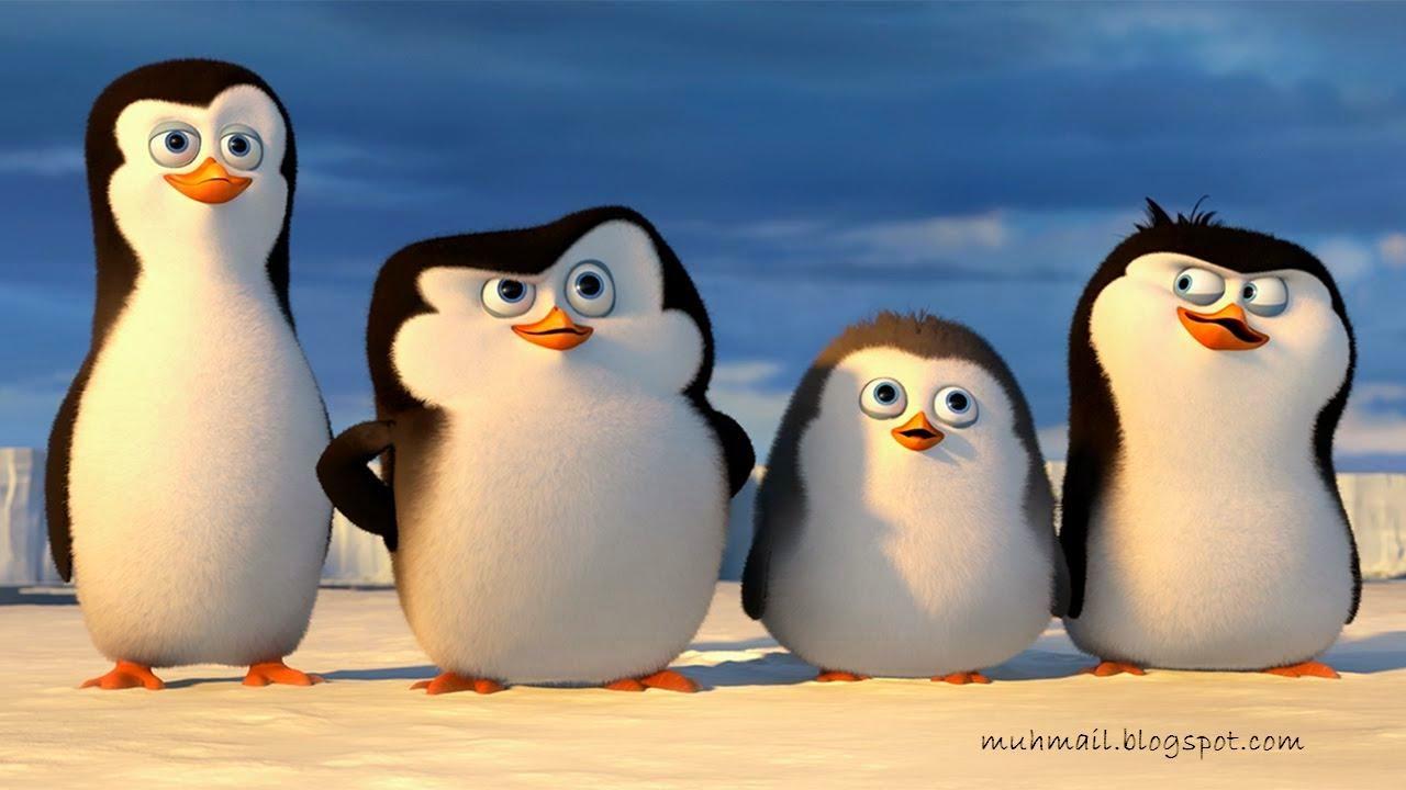 Welcome To Muhmail S Blog Pelajaran Yang Dapat Diambil Dalam Film Penguins Of Madagascar 2014