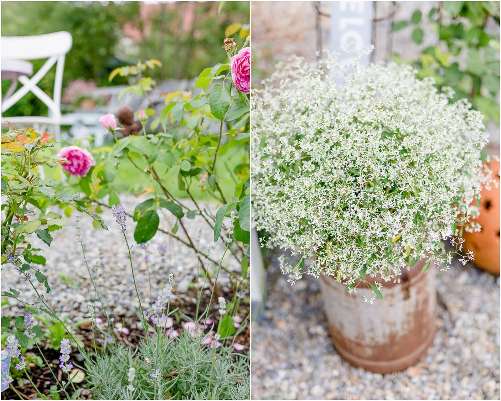 Inspirierend Alles Für Garten Schema