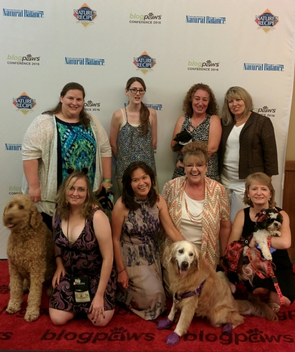 Dog Looks Like A Rug: Pets On The #BlogPaws Red Carpet
