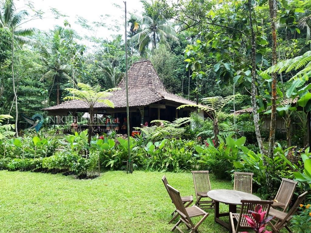 Pondok Belajar Lemungsur, Tawarkan Suasana Alam yang Tenang di Kaki Bukit Mahameru