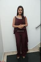 Nikki Galrani in a Brown Shining Sleeveless Gown at Nakshatram music launch ~  Exclusive 109.JPG