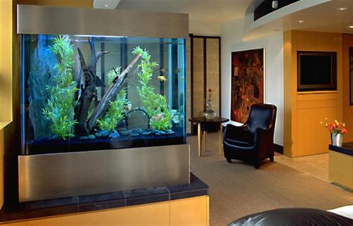 Incre bles im genes de dise o de acuarios for Disenos de acuarios