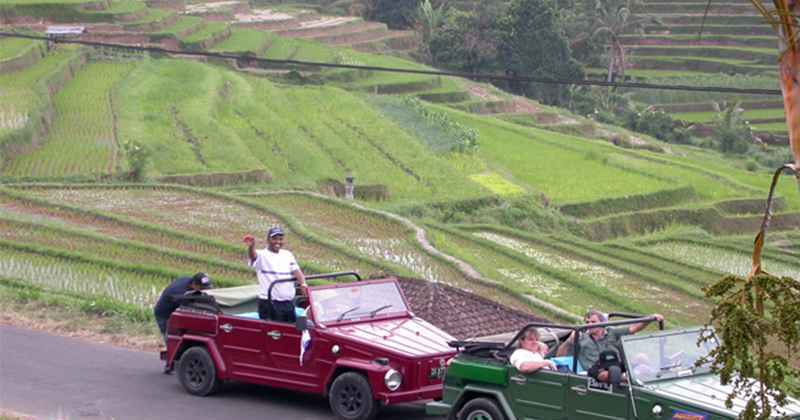 VW Safari Bali Tours - Bali, Tour, Adventure, VW Safari, Holiday, Attraction