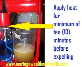 make moringa seed oil