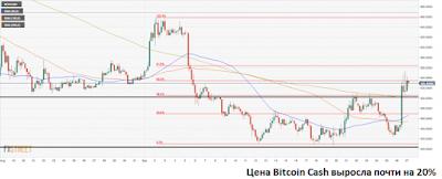 Цена Bitcoin Cash выросла почти на 20%