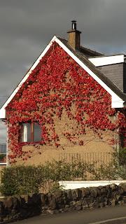 Őszi színek egy stirling-i ház oldalán